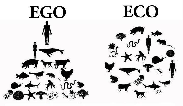 Ego-2-Eco
