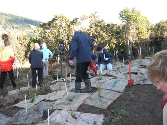 Voluntarios en el Ecosantuario Orokonui_Valery Fay